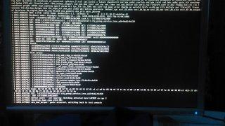 Kernel panic with Docker